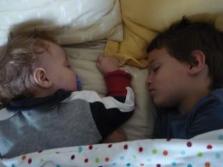 orli sebi sleeping